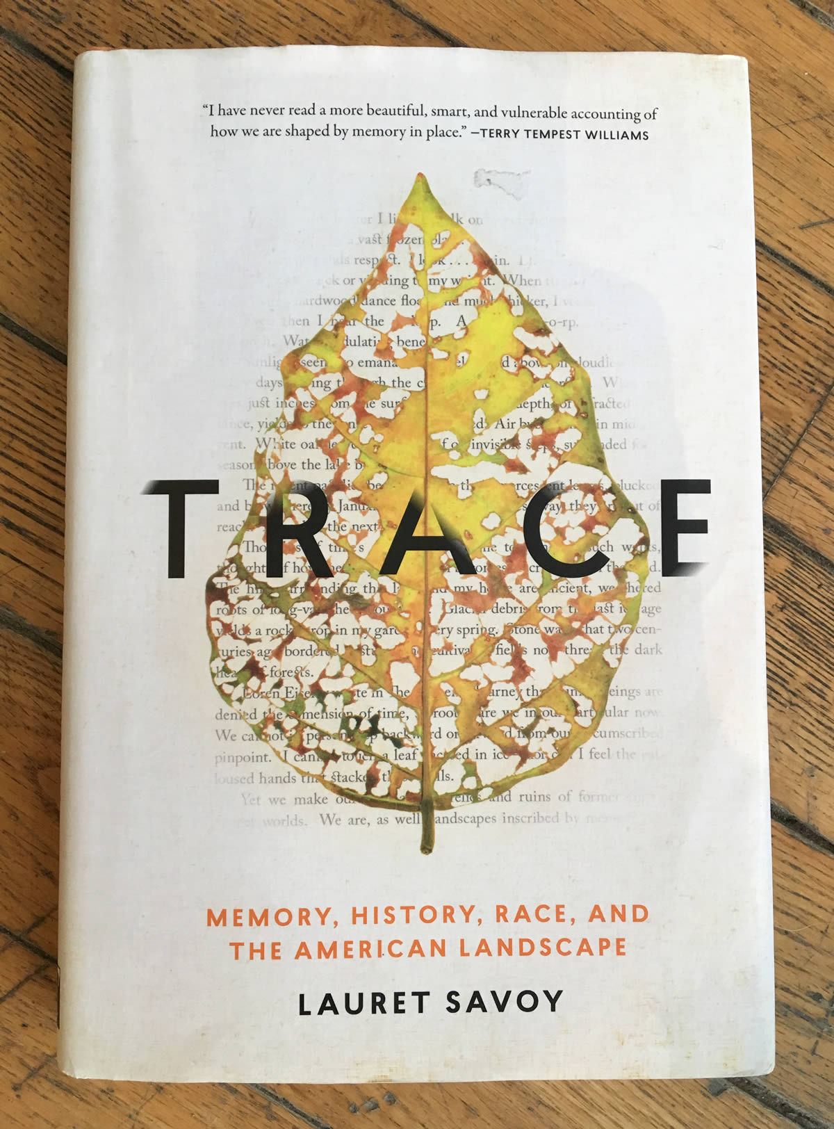 Lauret Savoy's Trace: Memory, History, Race, and the American Landscape (2015). [Photo] Katie Ives