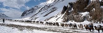 #alpinistcommunityproject John Climaco