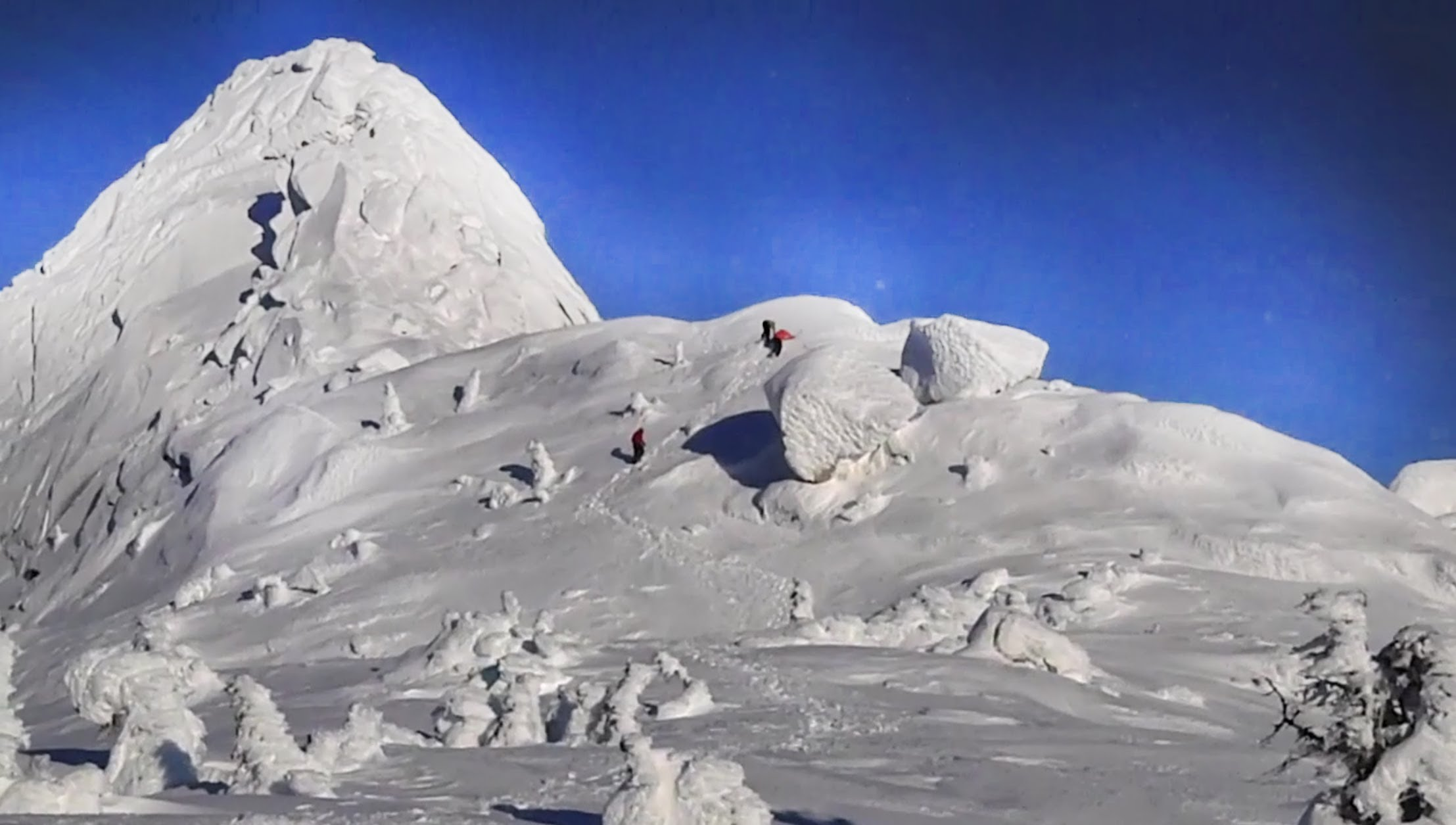 Climbers make their way up White Needle (6420m) in the Indian Himalaya. [Photo] Courtesy of the Indian Mountaineering Foundation