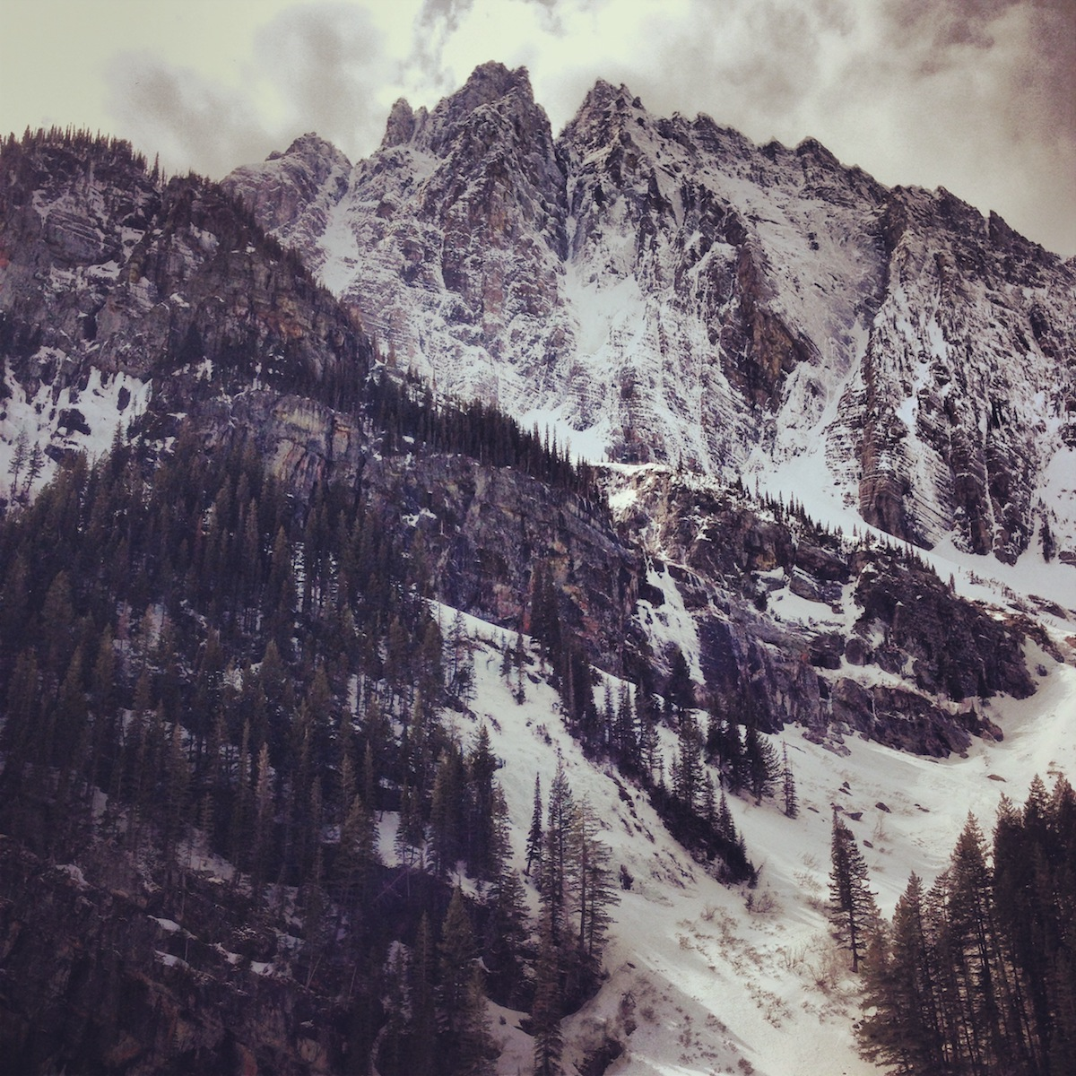 A Peak's north face with the prominent couloir of Canmore Wedding Party visible in the center. [Photo] Jess Roskelley
