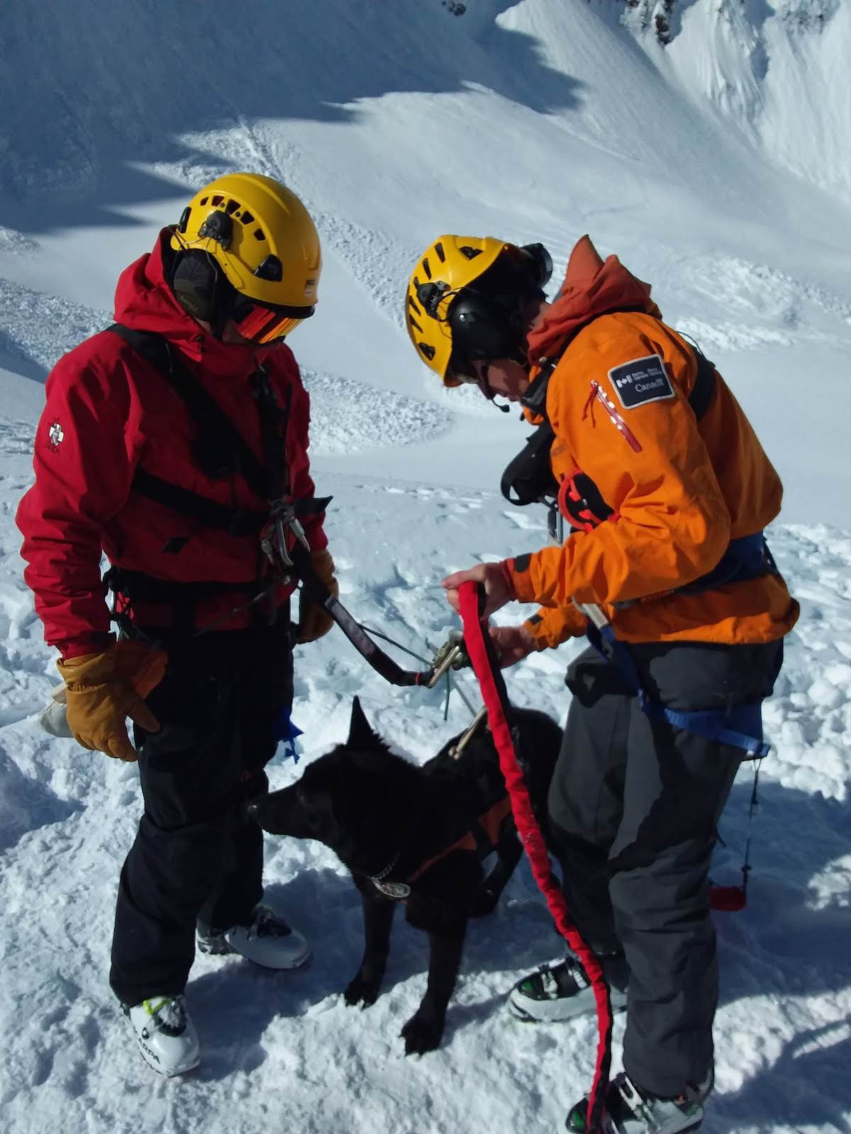The search dog with handlers. [Photo] Courtesy of Parks Canada