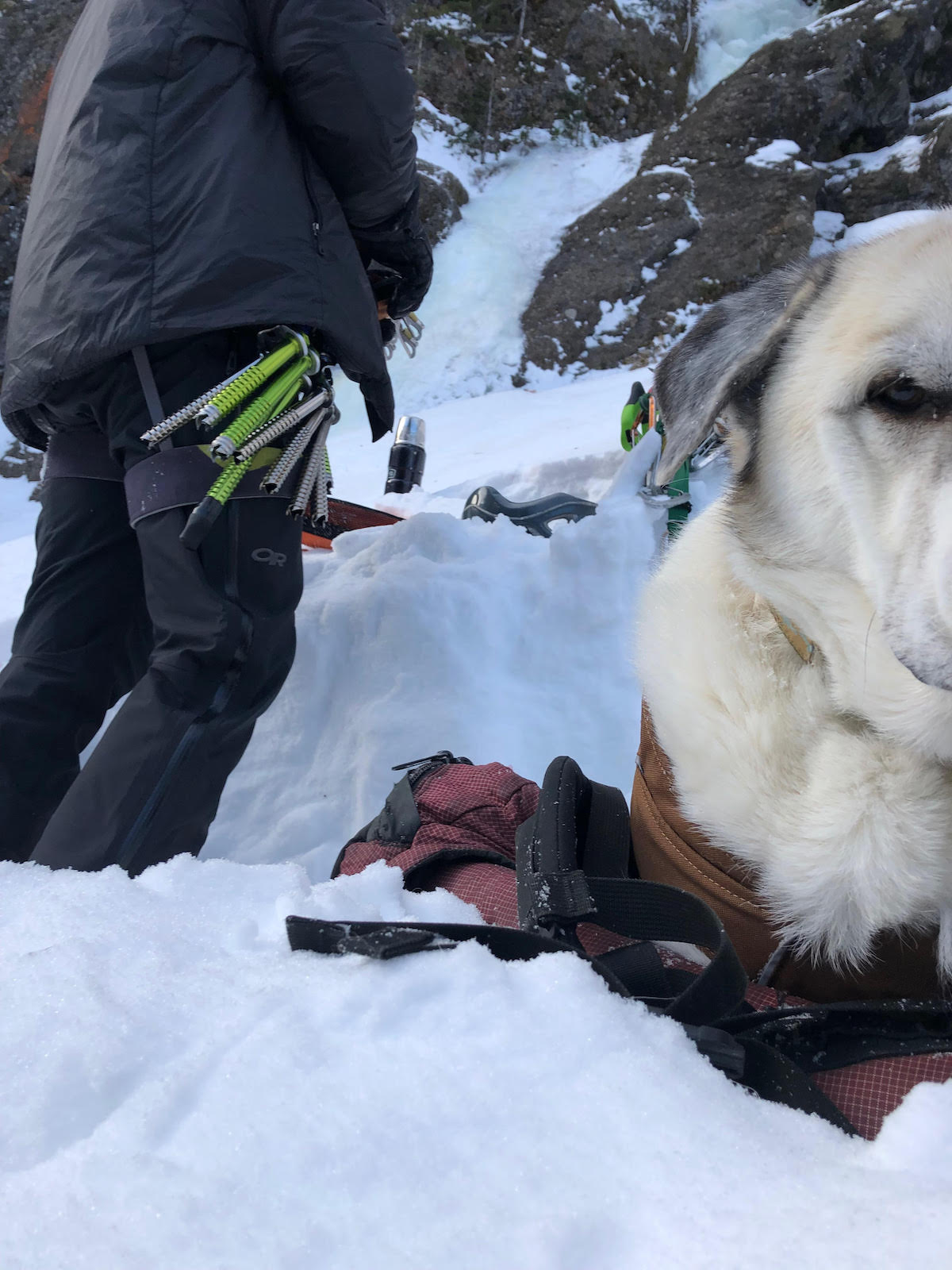 One of the black, reservoir tip caps can be seen on the long Ultralight Express screw that is racked on the author's harness in the background while Kanut the dog stares down the camera. [Photo] Chris Luehder
